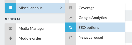 seo-options.png