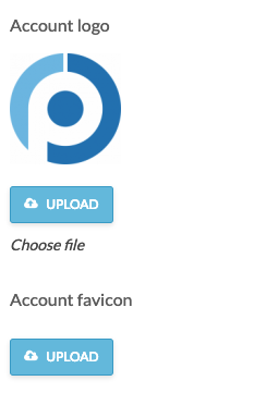 account logo and favicon section